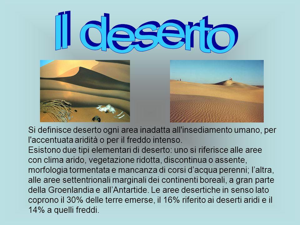 Il deserto Si definisce deserto ogni area inadatta all insediamento umano, per l accentuata aridità o per il freddo intenso.