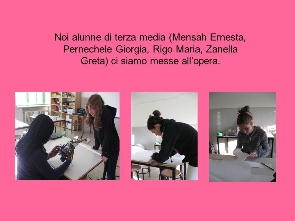 Noi alunne di terza media (Mensah Ernesta, Pernechele Giorgia, Rigo Maria, Zanella Greta) ci siamo messe all'opera.
