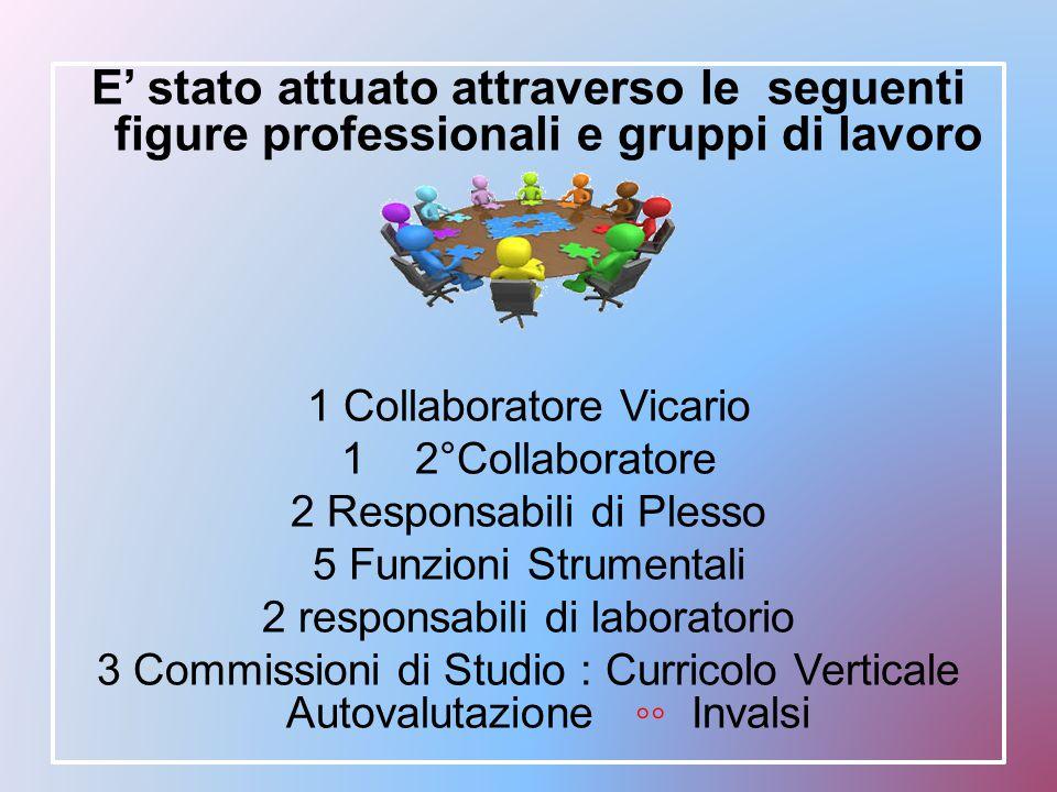 E' stato attuato attraverso le seguenti figure professionali e gruppi di lavoro