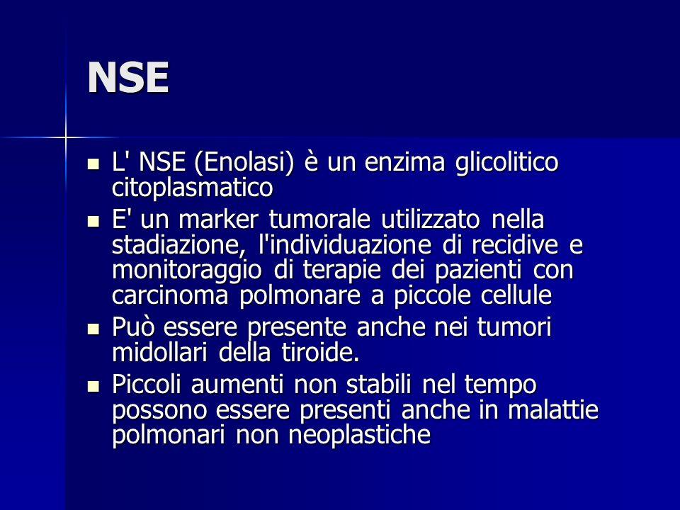 NSE L NSE (Enolasi) è un enzima glicolitico citoplasmatico