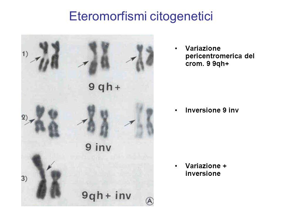Eteromorfismi citogenetici