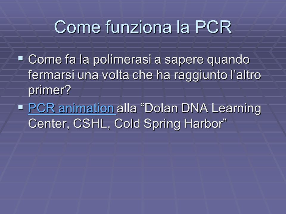 Come funziona la PCR Come fa la polimerasi a sapere quando fermarsi una volta che ha raggiunto l'altro primer