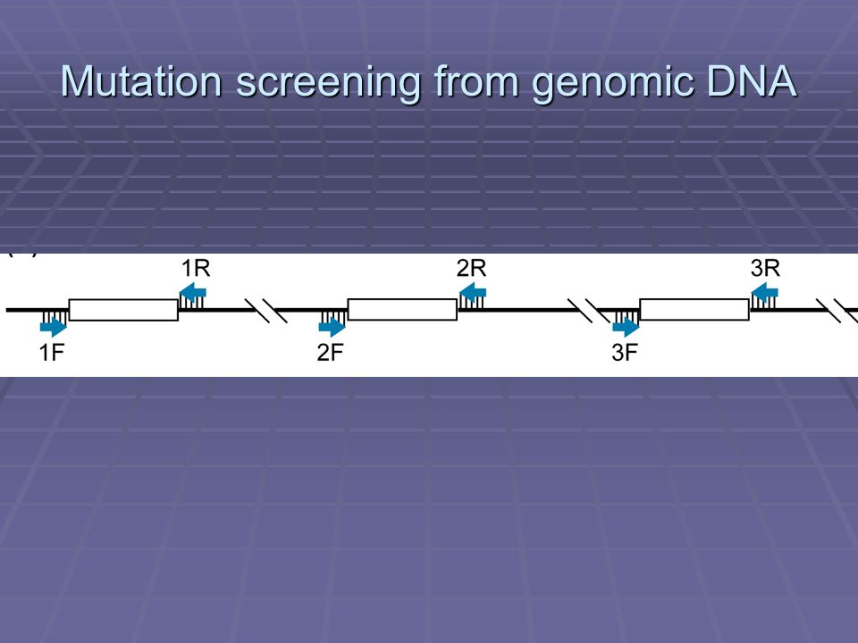 Mutation screening from genomic DNA