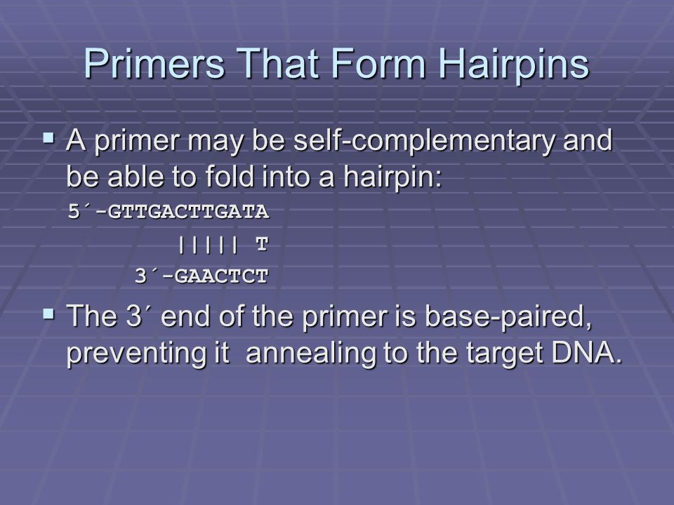 Primers That Form Hairpins