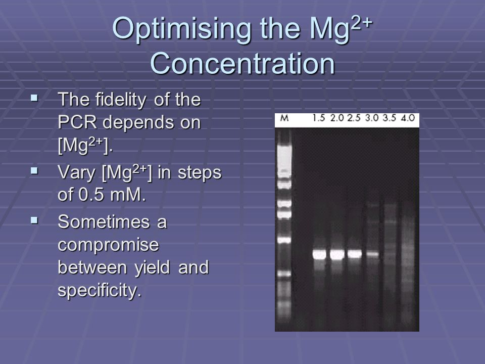 Optimising the Mg2+ Concentration