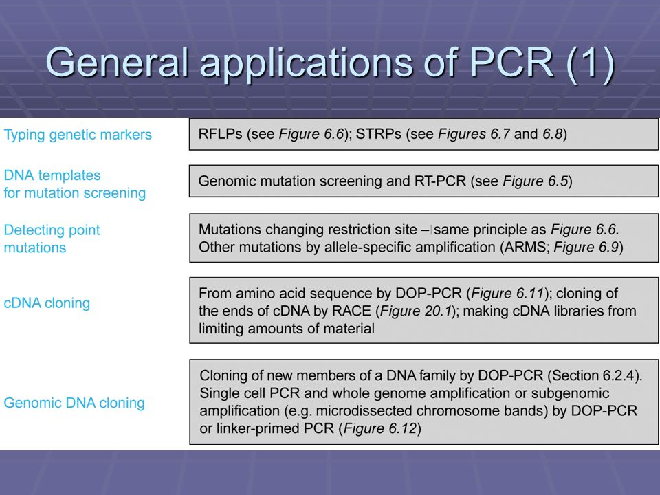 General applications of PCR (1)