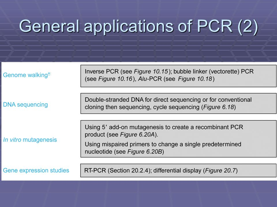 General applications of PCR (2)