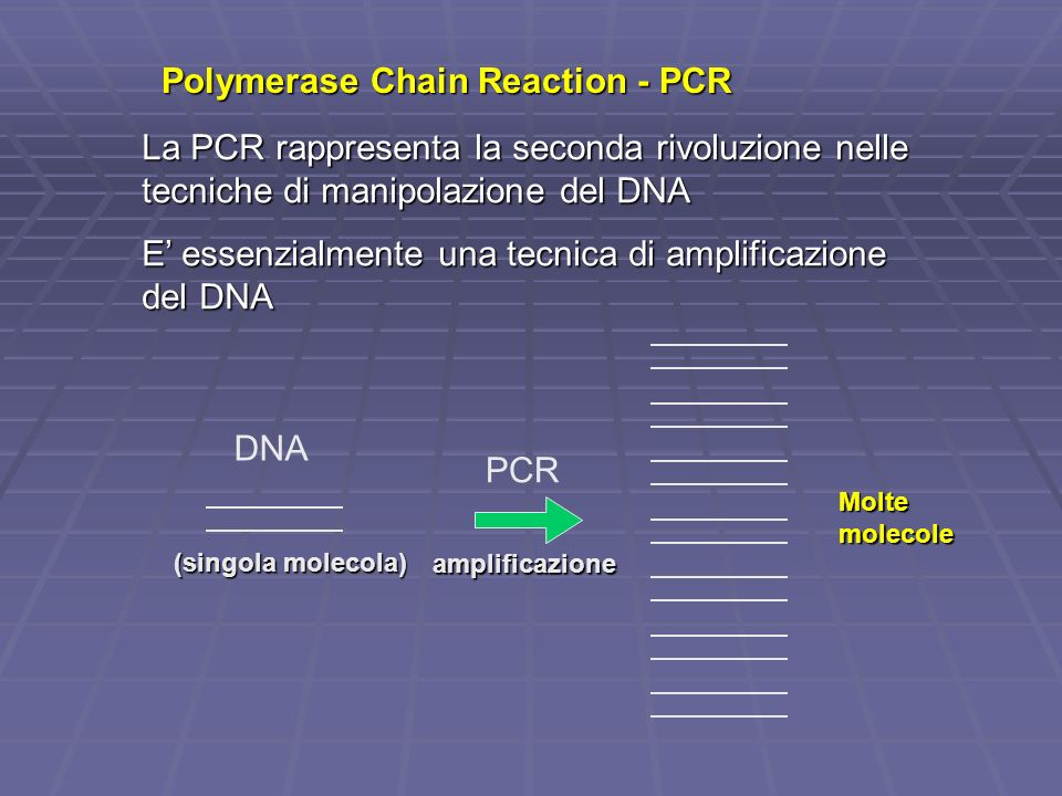 Polymerase Chain Reaction - PCR