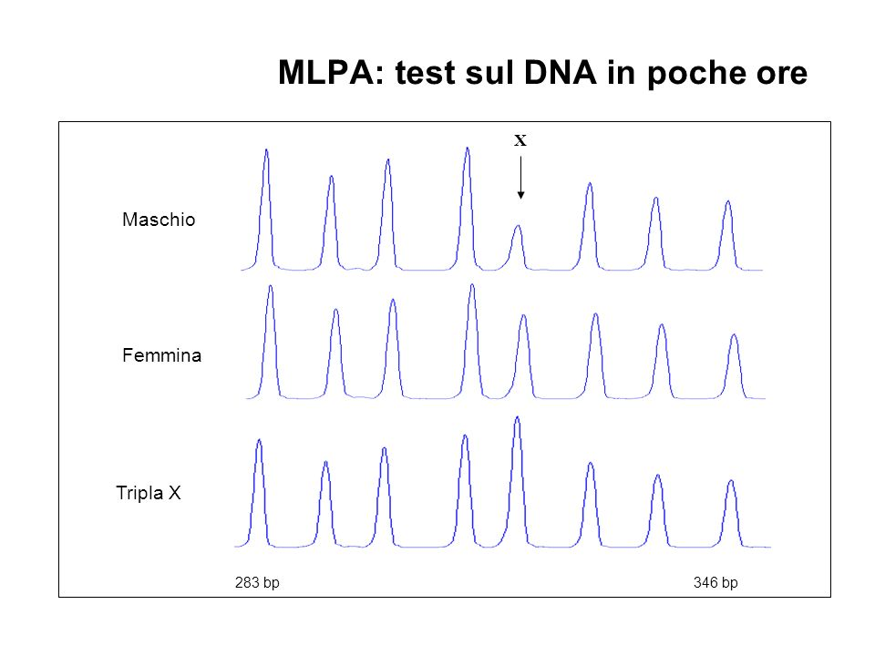 MLPA: test sul DNA in poche ore