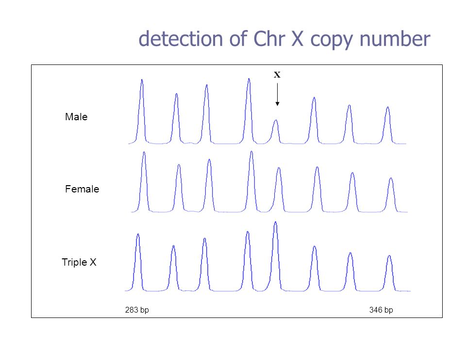 detection of Chr X copy number