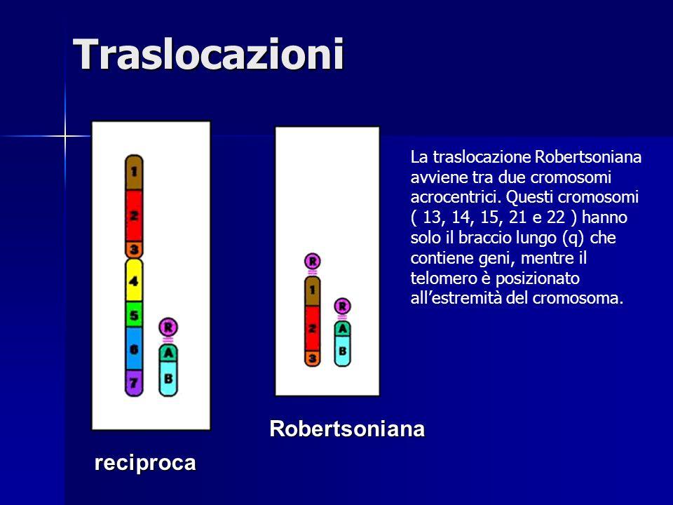 Traslocazioni Robertsoniana reciproca