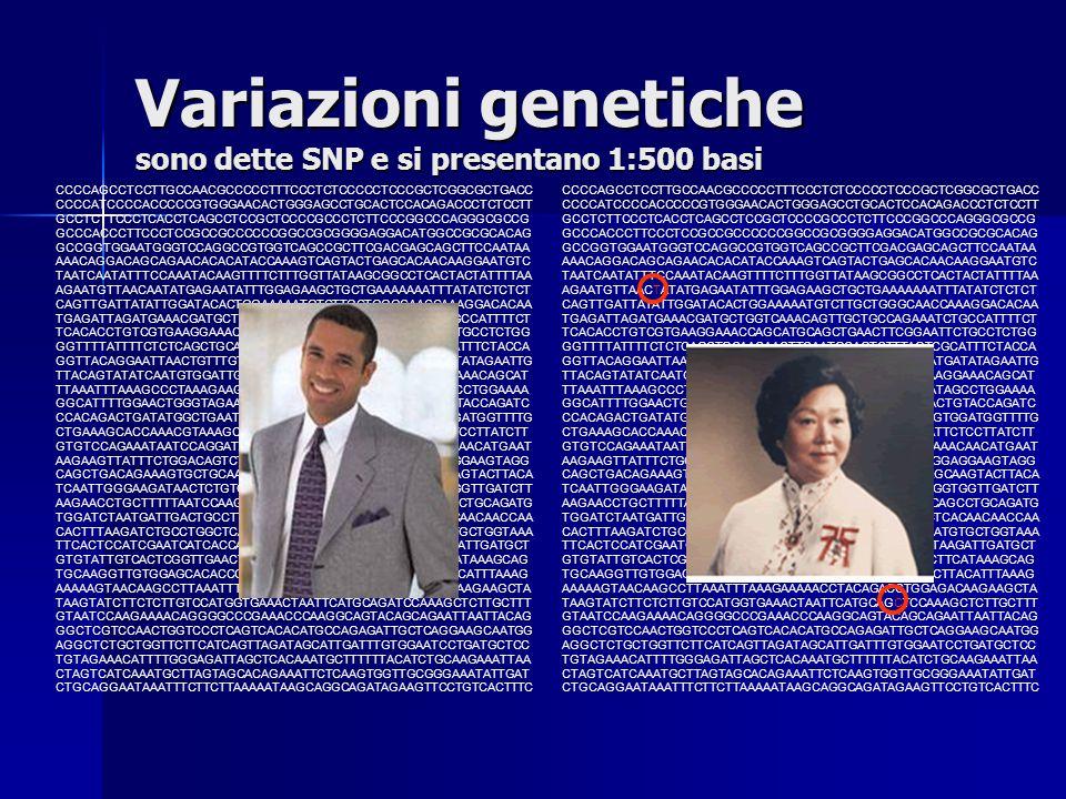 Variazioni genetiche sono dette SNP e si presentano 1:500 basi
