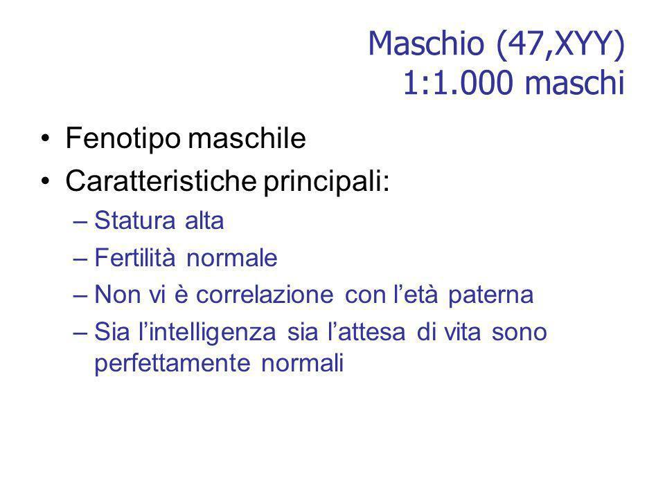 Maschio (47,XYY) 1:1.000 maschi Fenotipo maschile