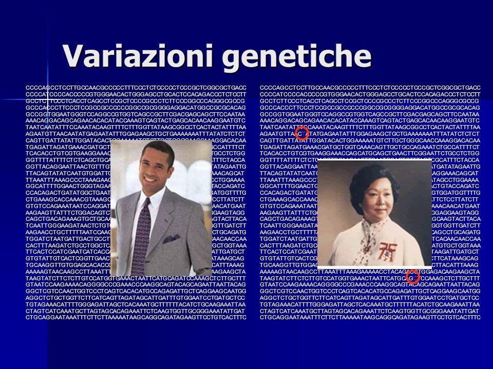 Variazioni genetiche
