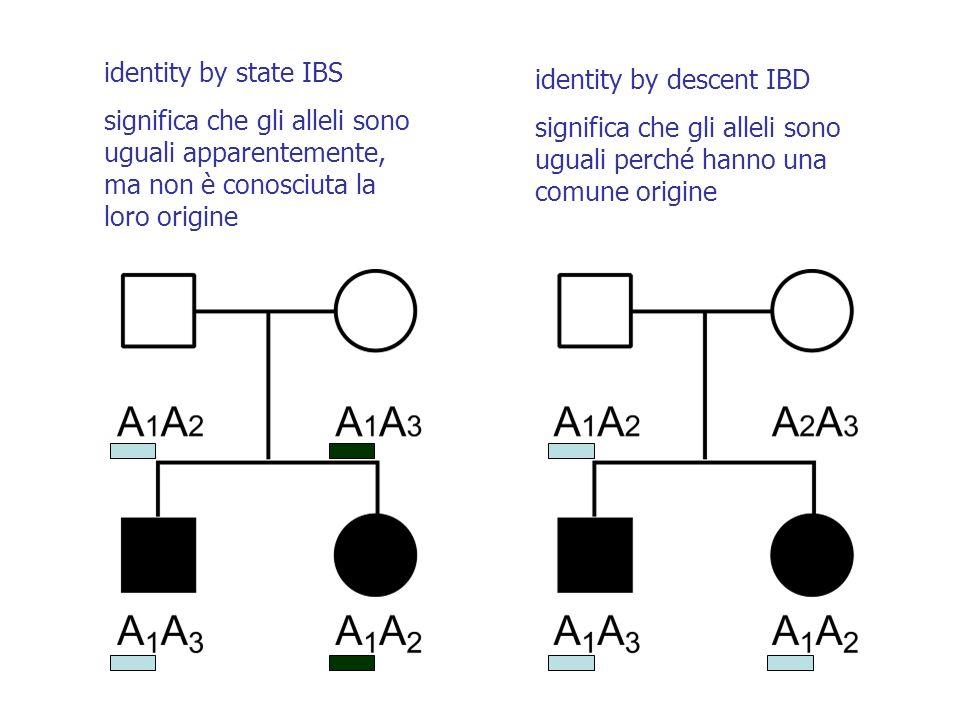 identity by state IBS significa che gli alleli sono uguali apparentemente, ma non è conosciuta la loro origine.