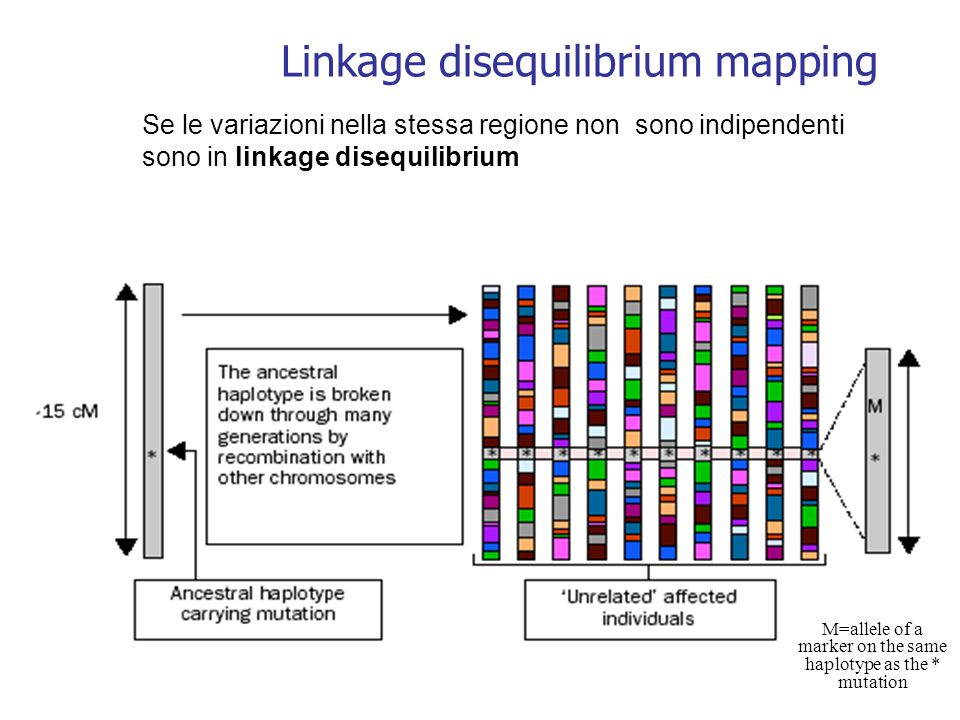 Linkage disequilibrium mapping