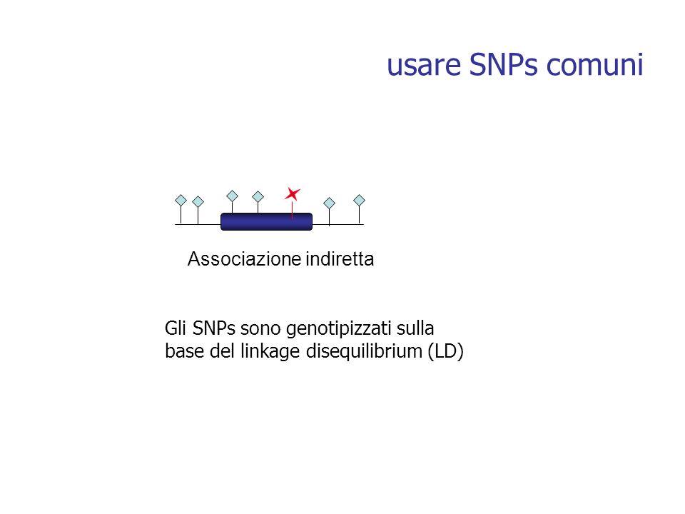 usare SNPs comuni Associazione indiretta