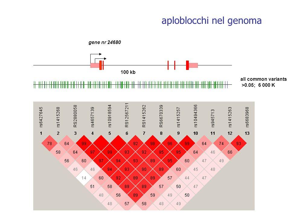 aploblocchi nel genoma