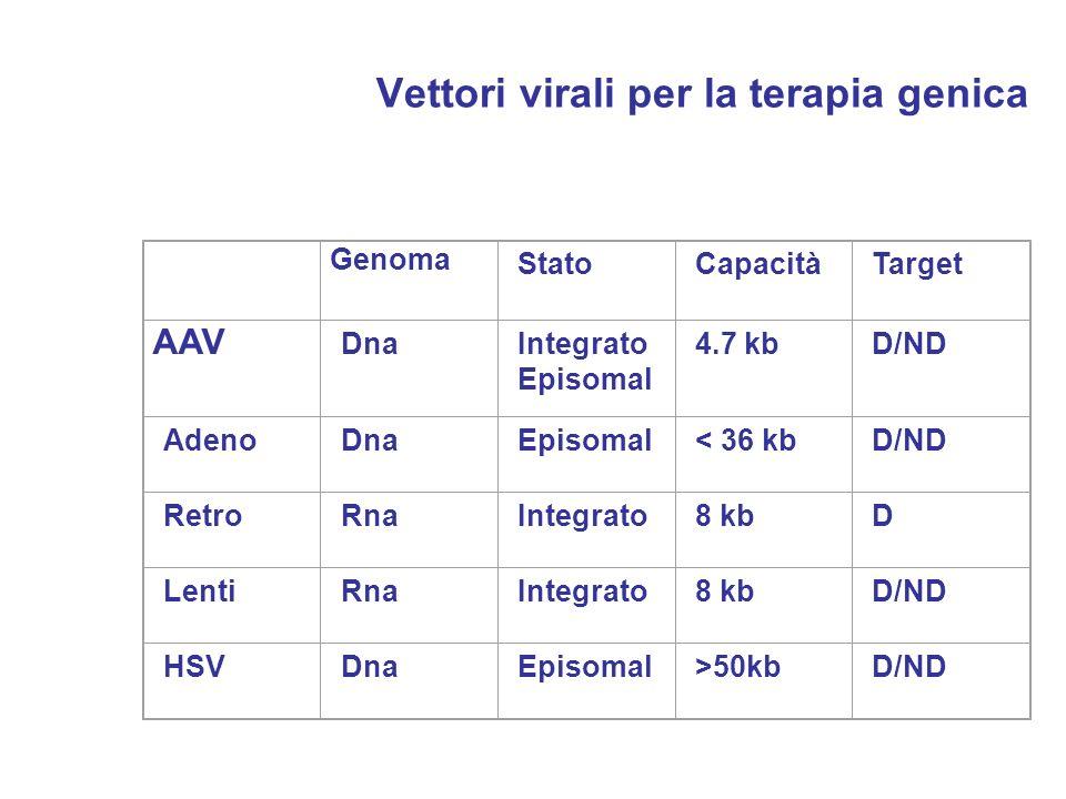 Vettori virali per la terapia genica
