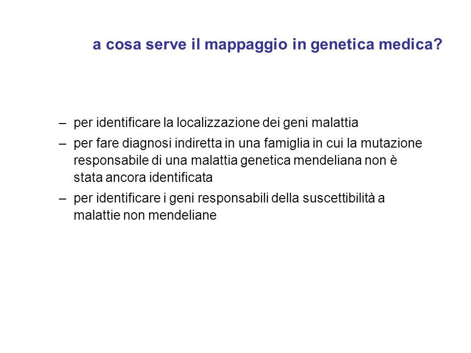 a cosa serve il mappaggio in genetica medica