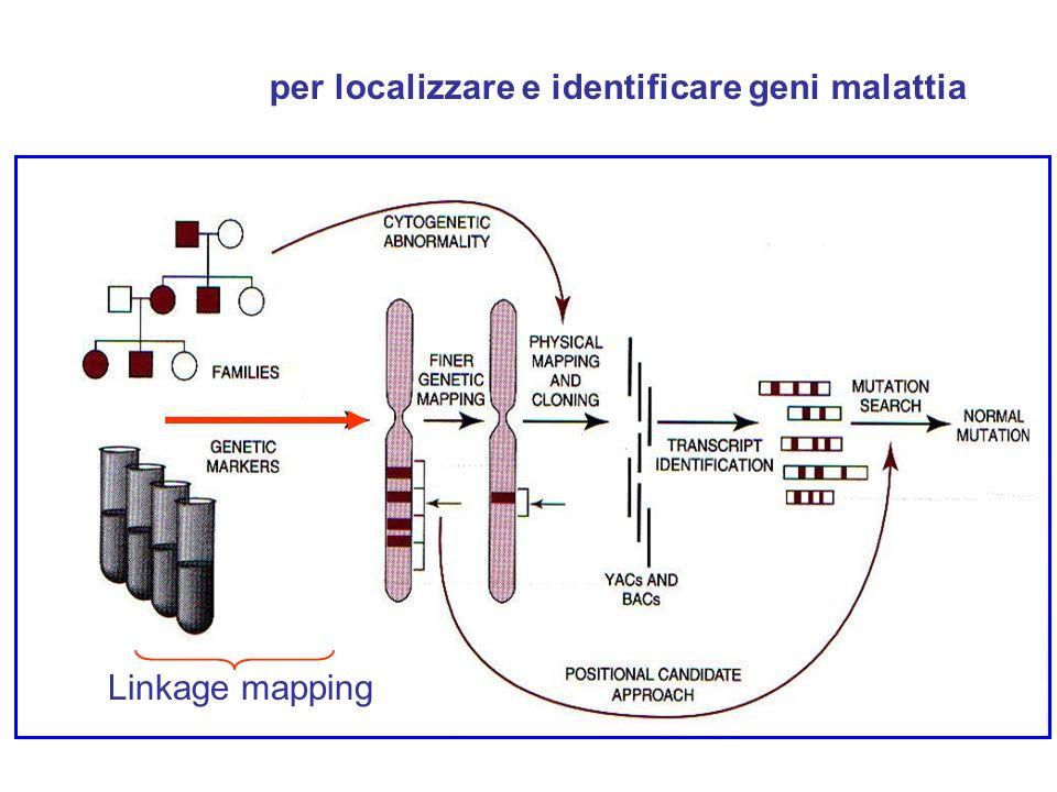 per localizzare e identificare geni malattia