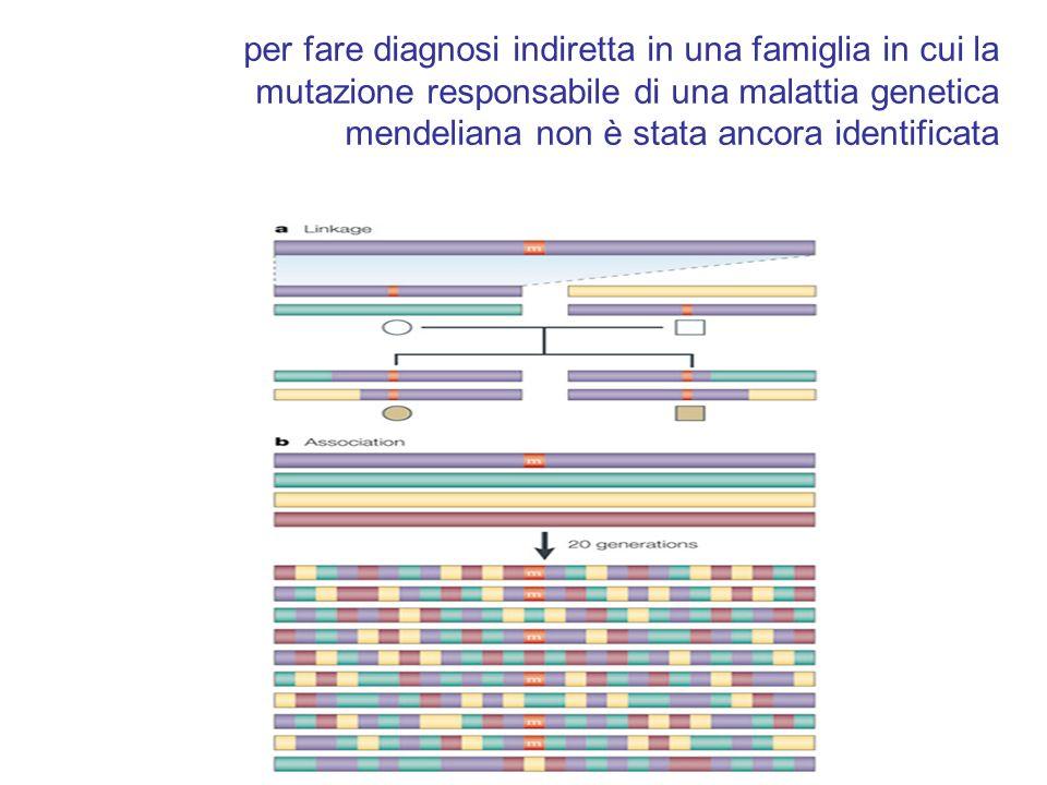 per fare diagnosi indiretta in una famiglia in cui la mutazione responsabile di una malattia genetica mendeliana non è stata ancora identificata