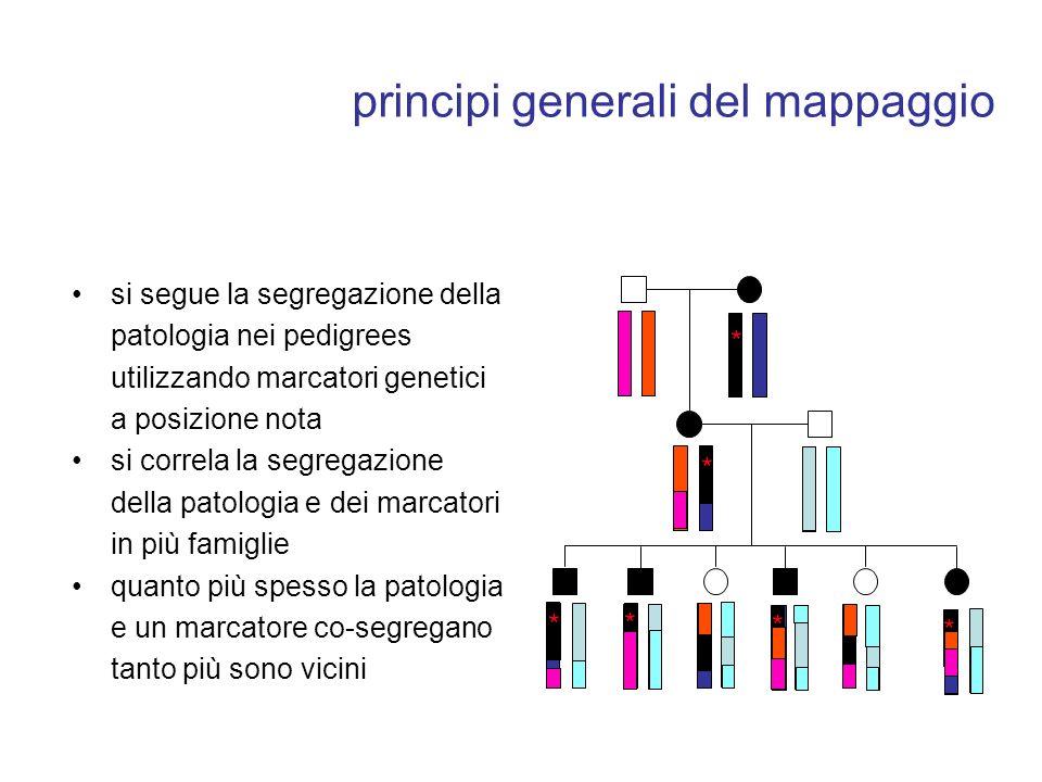 principi generali del mappaggio