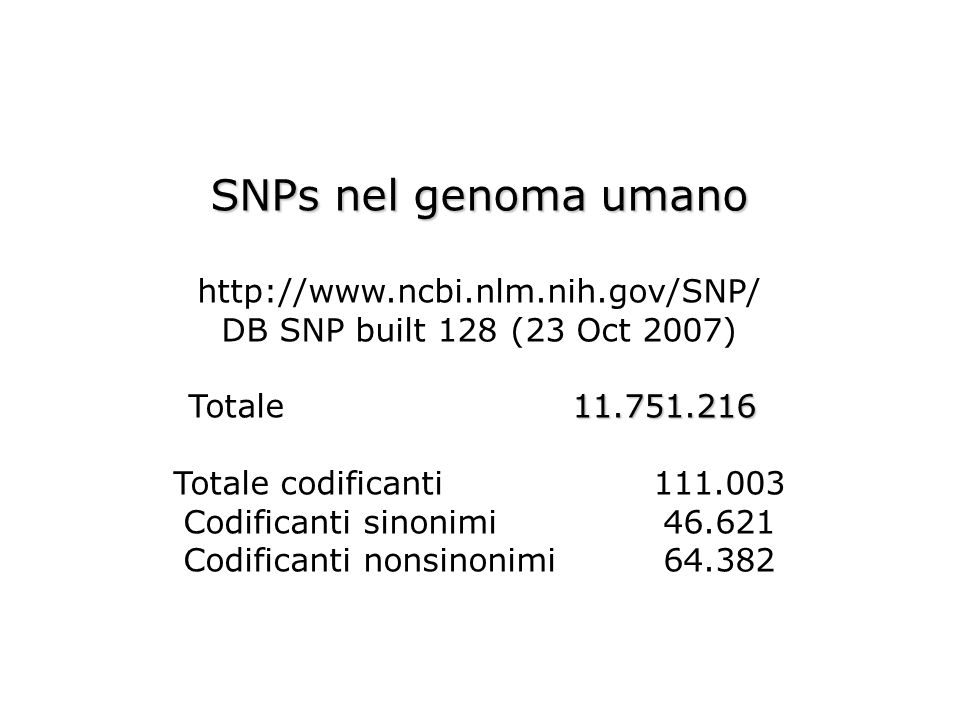 Codificanti nonsinonimi 64.382