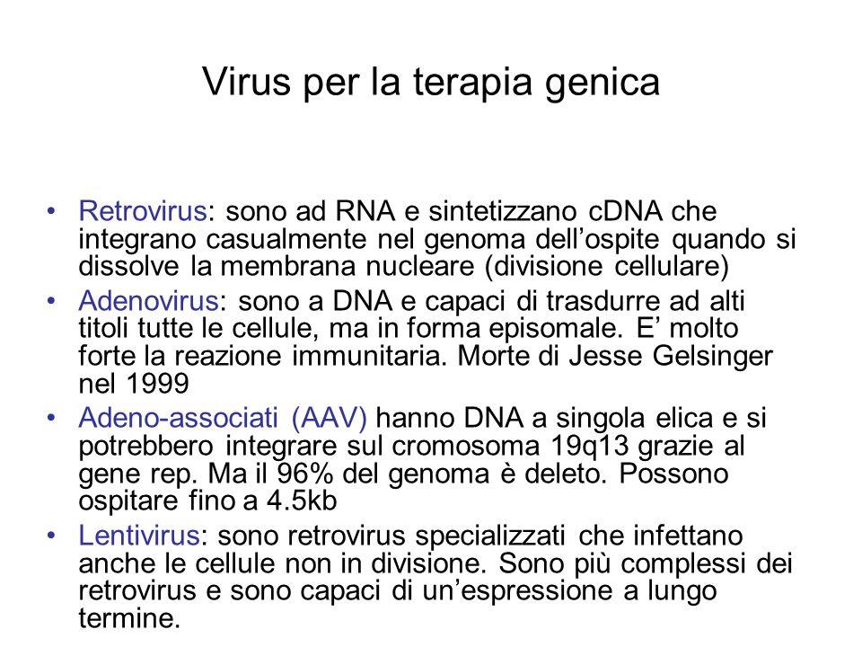 Virus per la terapia genica
