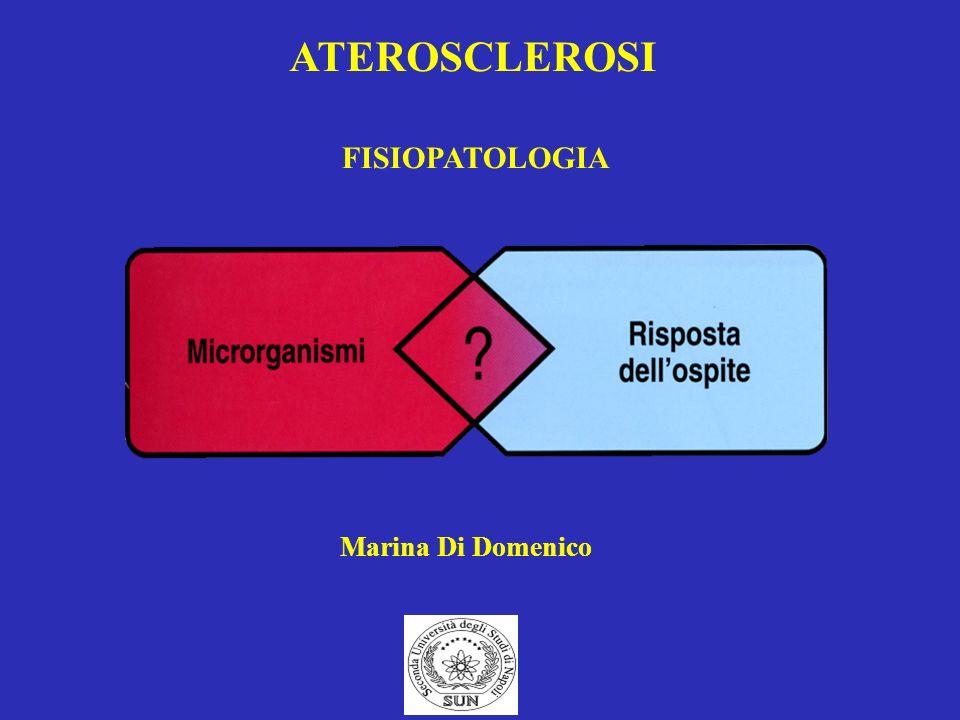 ATEROSCLEROSI FISIOPATOLOGIA Marina Di Domenico