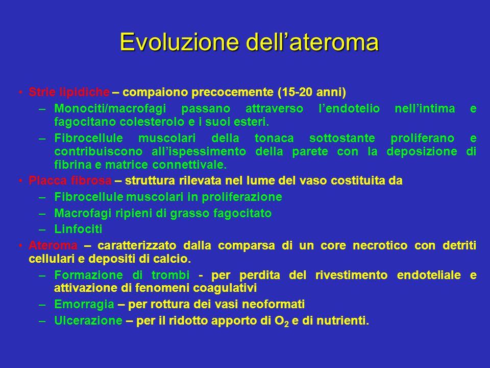 Evoluzione dell'ateroma