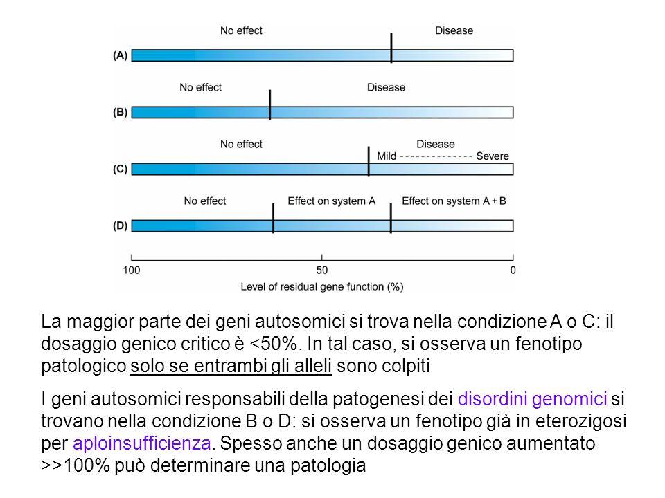 La maggior parte dei geni autosomici si trova nella condizione A o C: il dosaggio genico critico è <50%. In tal caso, si osserva un fenotipo patologico solo se entrambi gli alleli sono colpiti