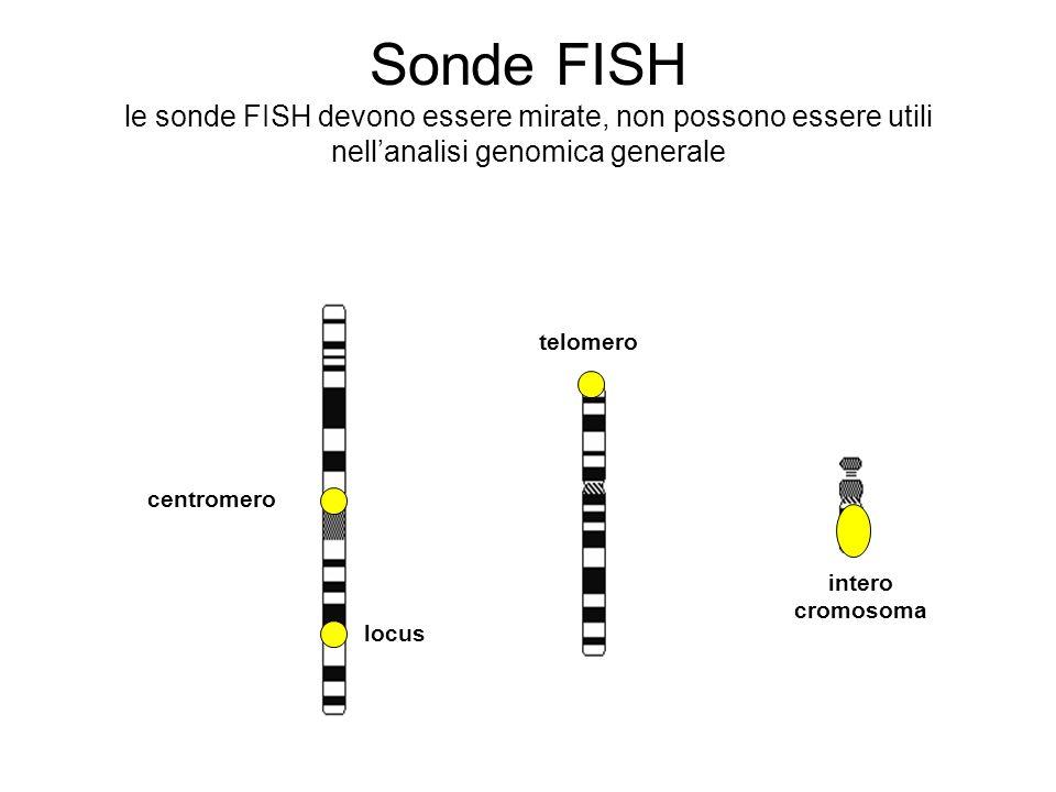 Sonde FISH le sonde FISH devono essere mirate, non possono essere utili nell'analisi genomica generale