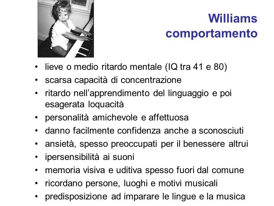 Williams comportamento