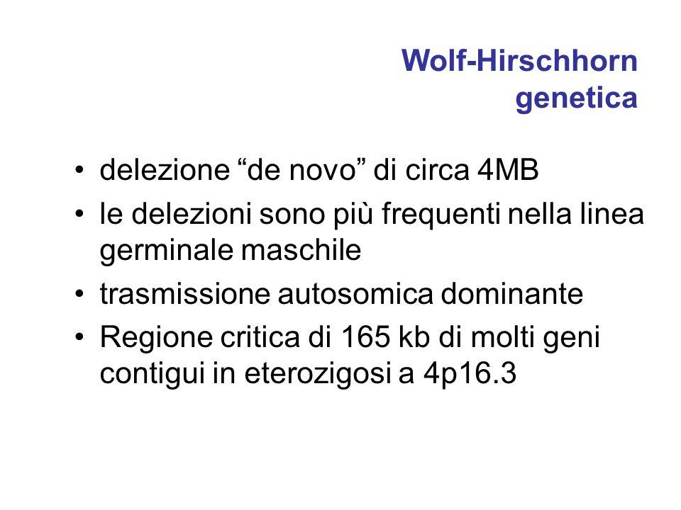 Wolf-Hirschhorn genetica