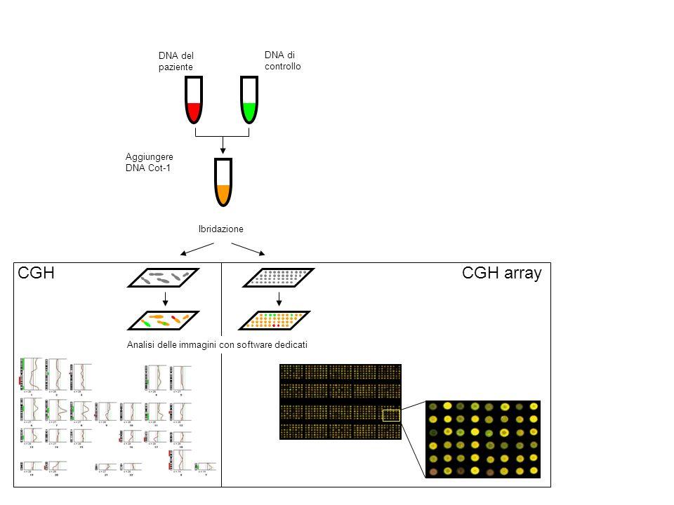 Analisi delle immagini con software dedicati