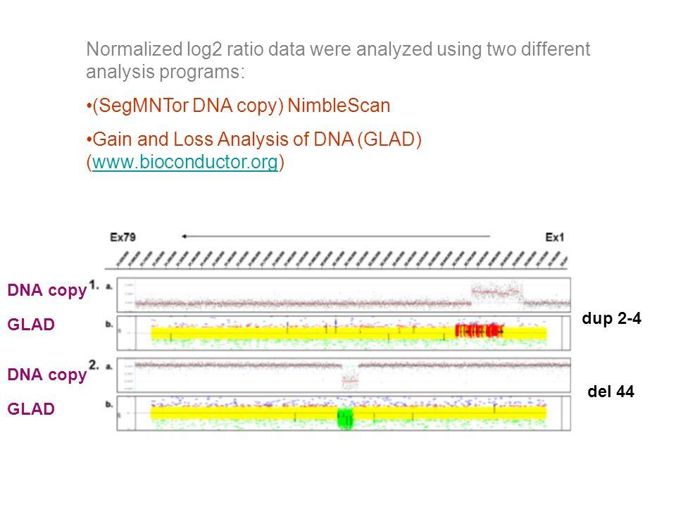 (SegMNTor DNA copy) NimbleScan