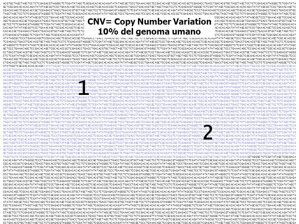 CNV= Copy Number Variation