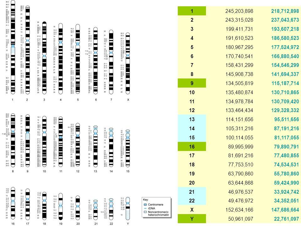 1 245,203,898. 218,712,898. 2. 243,315,028. 237,043,673. 3. 199,411,731. 193,607,218. 4. 191,610,523.