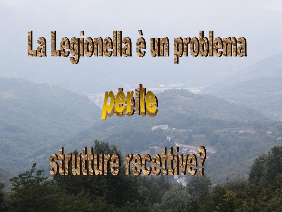 La Legionella è un problema