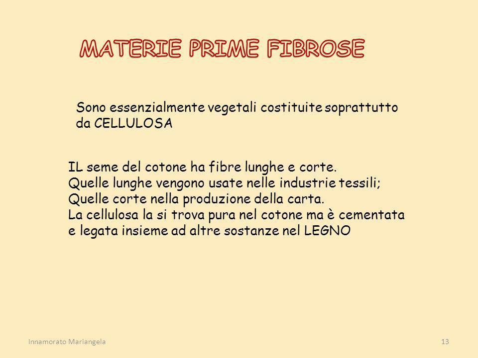 MATERIE PRIME FIBROSE Sono essenzialmente vegetali costituite soprattutto da CELLULOSA. IL seme del cotone ha fibre lunghe e corte.