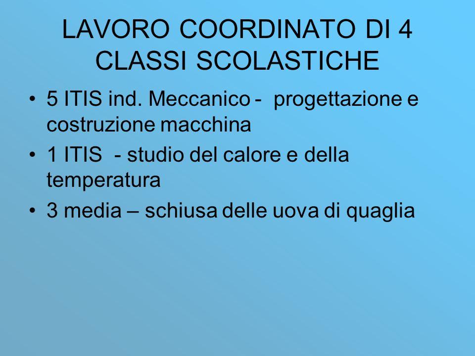 LAVORO COORDINATO DI 4 CLASSI SCOLASTICHE