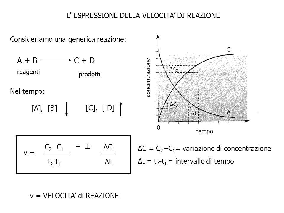 A + B C + D FIG 13.1 L' ESPRESSIONE DELLA VELOCITA' DI REAZIONE