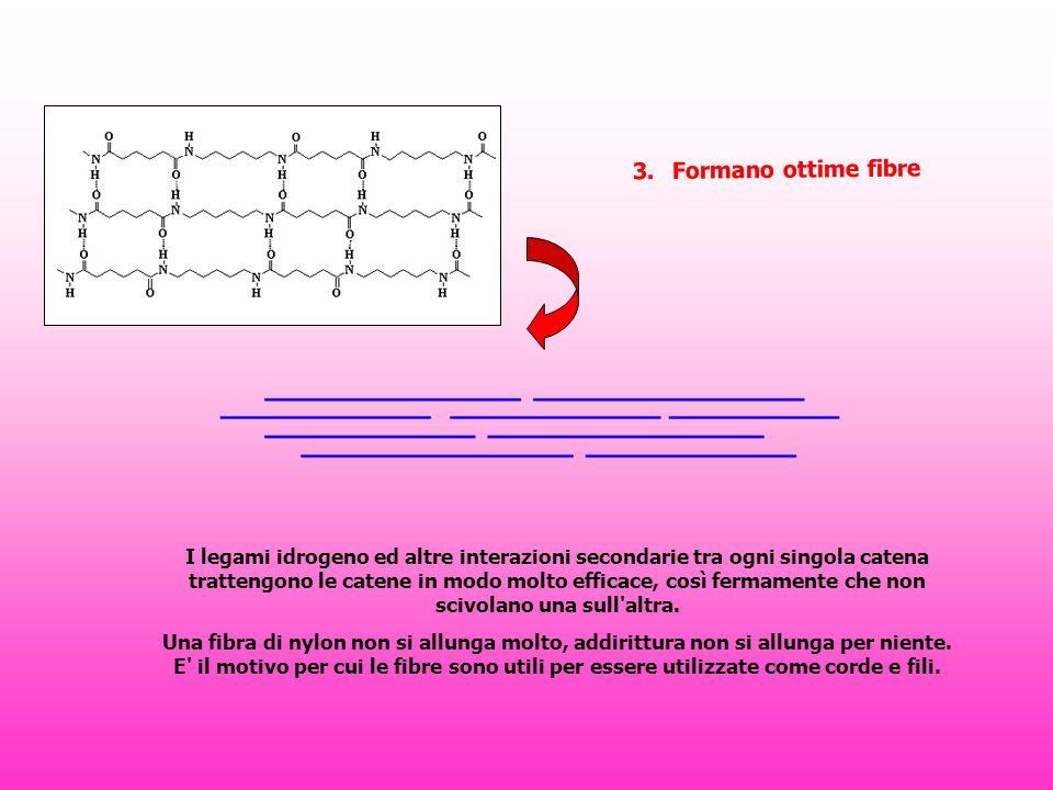 3. Formano ottime fibre