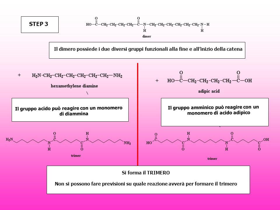 STEP 3 Il dimero possiede i due diversi gruppi funzionali alla fine e all'inizio della catena.