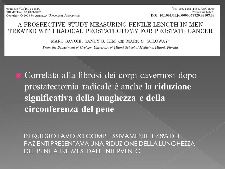 Correlata alla fibrosi dei corpi cavernosi dopo prostatectomia radicale è anche la riduzione significativa della lunghezza e della circonferenza del pene