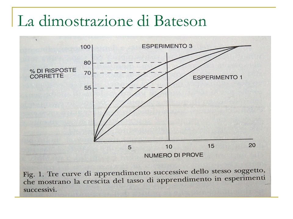 La dimostrazione di Bateson