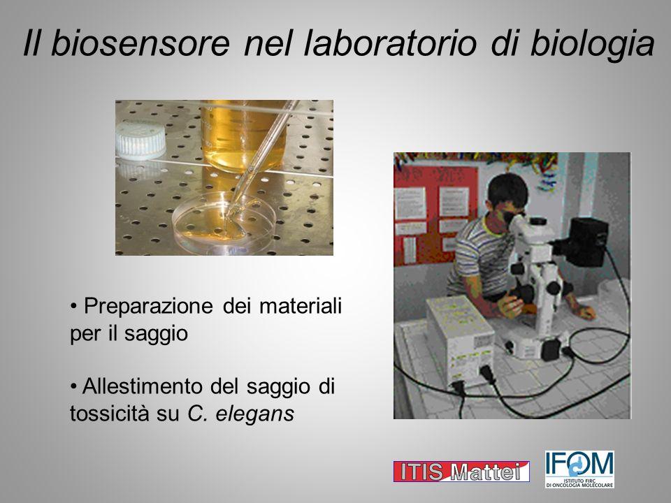 Il biosensore nel laboratorio di biologia