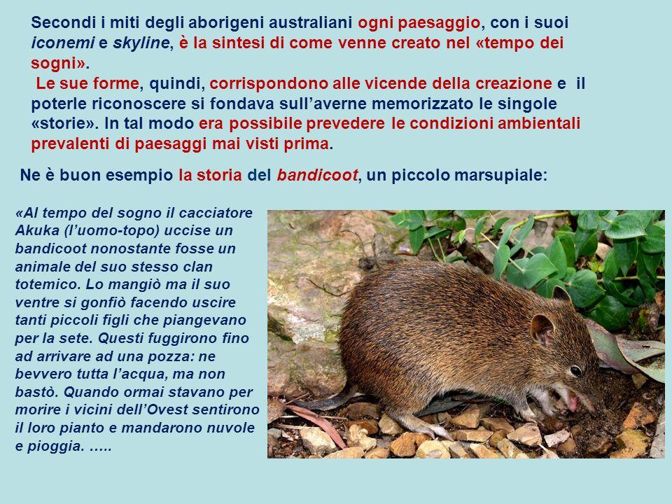 Ne è buon esempio la storia del bandicoot, un piccolo marsupiale: