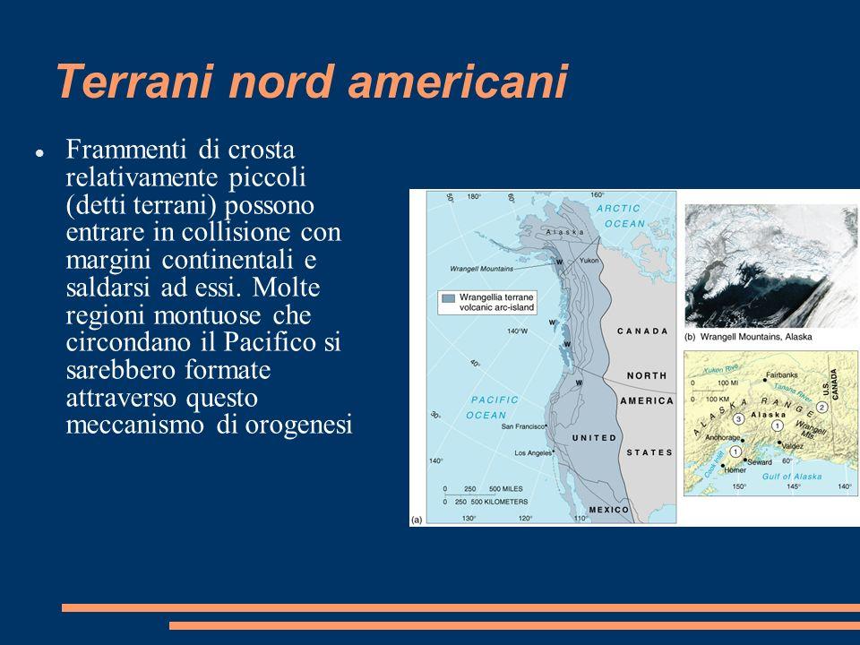 Terrani nord americani